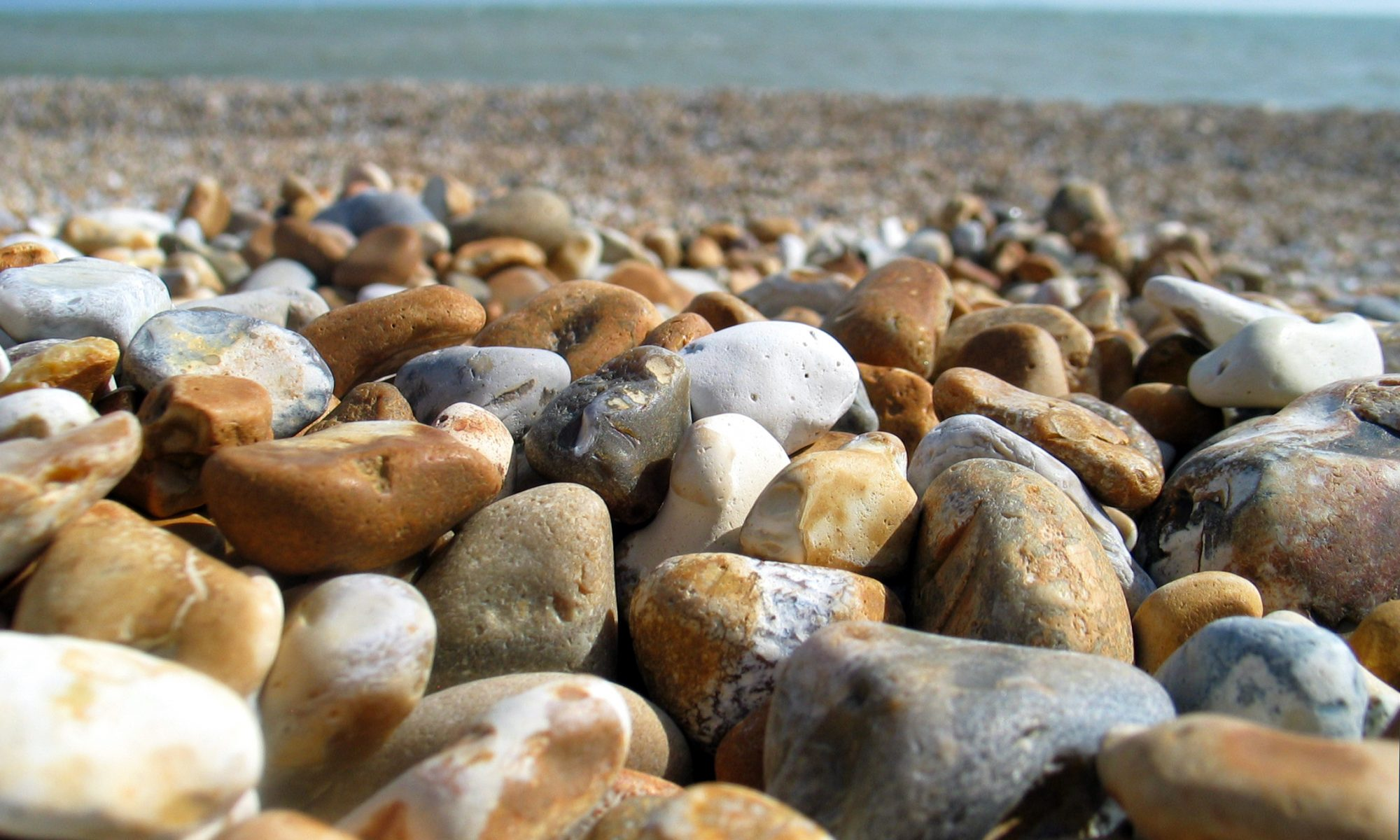 Dungeness pebbles close-up